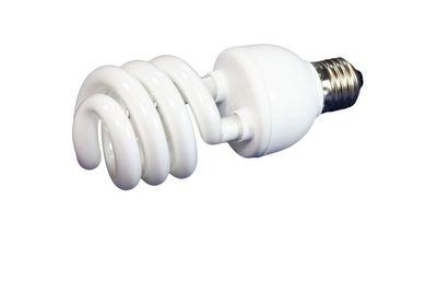 luminous tube lamp
