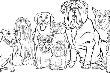 purebred dogs group cartoon for coloring