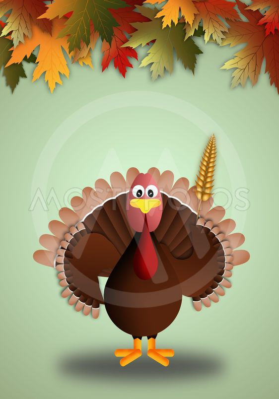 illustration of a turkey for Thanksgiving