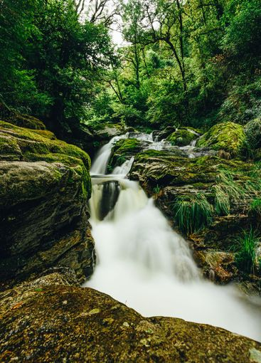 Long exposure shot of a river in the middle of a green...