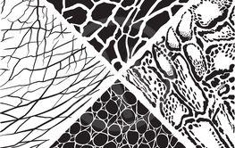 Wild animals pattern background