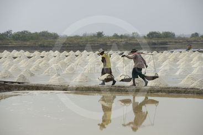 Salt farm i Thailand