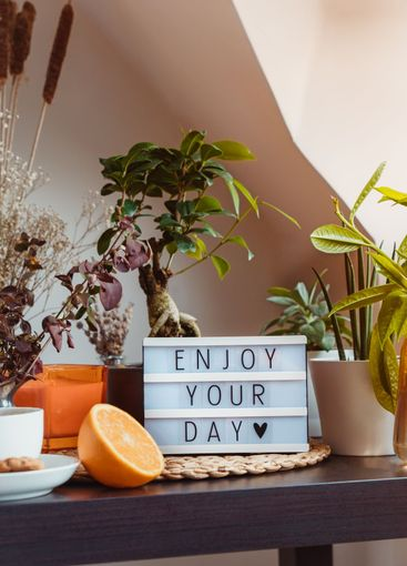 Enjoy your day message on lightbox standing on a table...