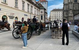 Fiaker Carriage Vienna