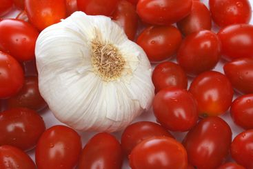 Garlic surrounded by cherry tomatoes