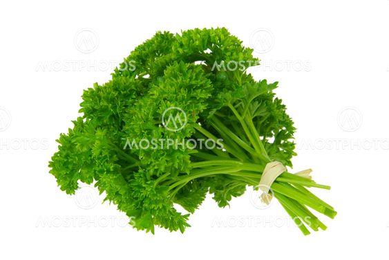 Petersilie - parsley 13