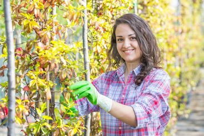Female Gardener Working