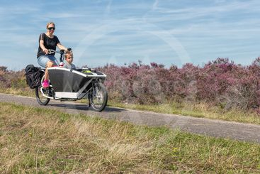 Woman with boy in carrier cycle at heath Dutch Veluwe