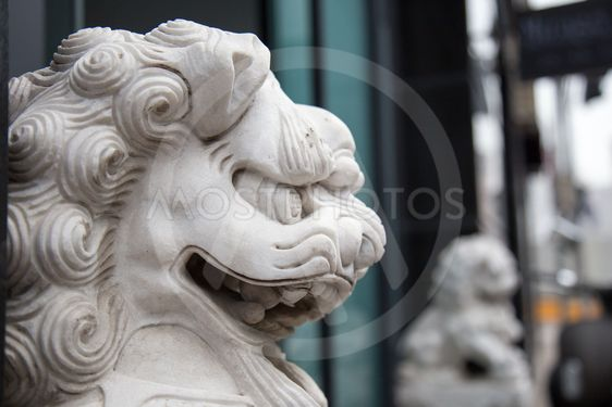 Fierce dragon lion
