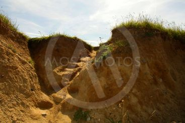 The image of the clay seashore with grass