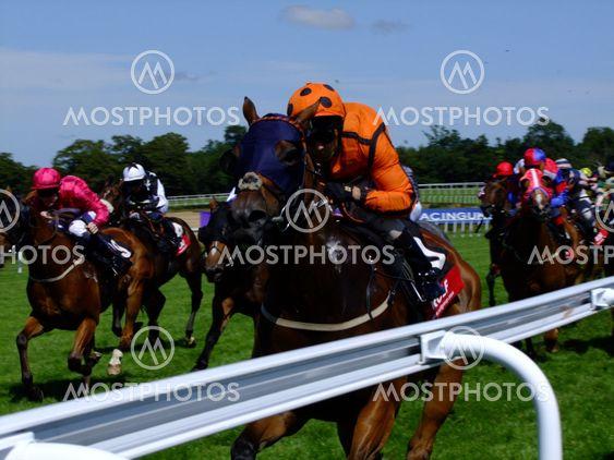 Racehorse & Jockey