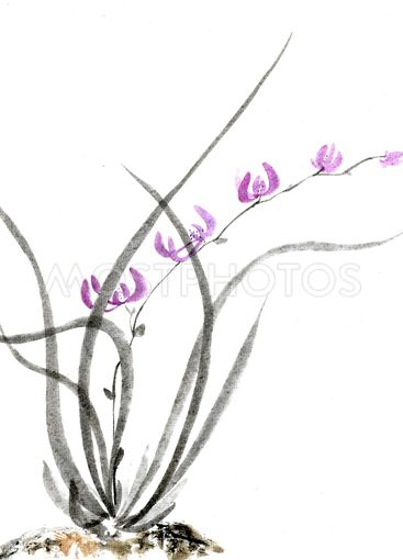 Wild orchid