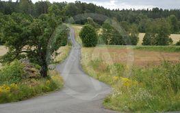 Småländsk natur i sommartid  (Sweden)