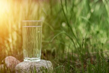 A glass of clean water on a background of greenery. The...