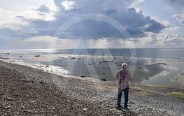Vid stranden av Neptuni åkrar på norra Öland