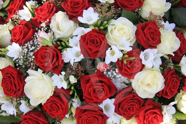 white and red roses in a bouquet