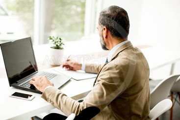 Handsome middle-aged businessman working on laptop in...