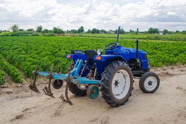 Blue tractor with a cultivator plow and the green field...