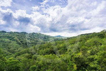 Beautiful view of the green hills covered in forests and...