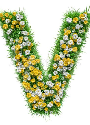 Letter V Of Green Grass And Flowers