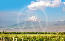 Ararat mountain and field