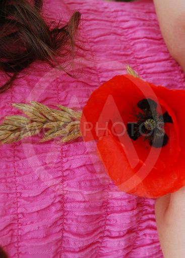 Poppy and ear in the hands 2