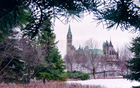 Evergreen Parliament