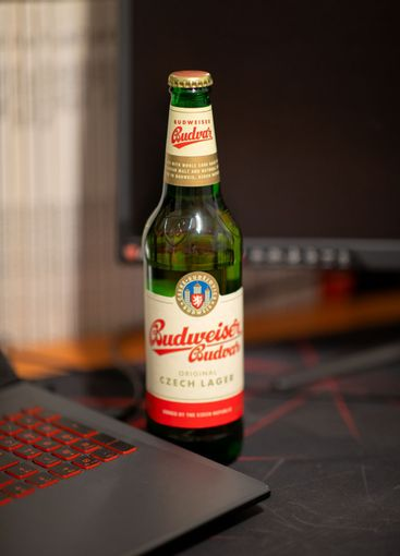 Budweiser Beer on the desk at work at the computer