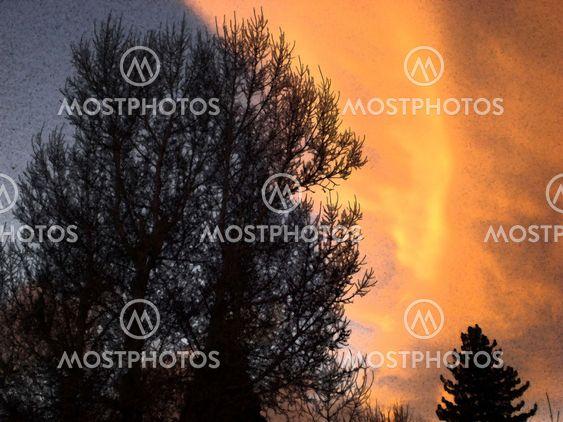 Abstrakti talvi auringonlasku