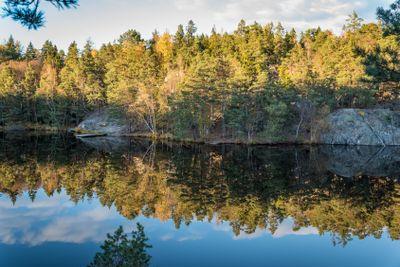 Small lake reflections
