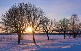 Solig dag på Varvet i Luleå