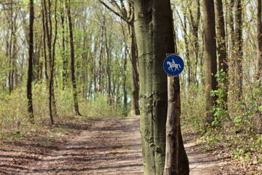 Sign marks equestrian trail in the forest on spring day