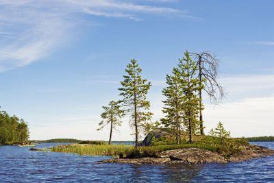 Small island on lake