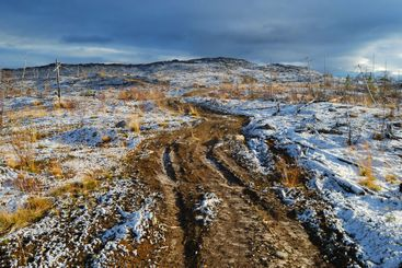 Road on the first snow