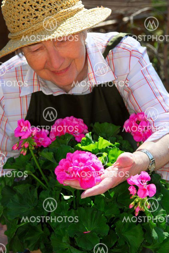 Äldre kvinna trädgårdsskötsel