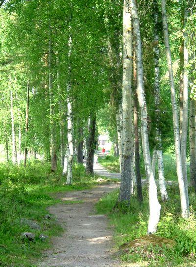 Vägen från Laduholmen