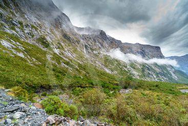 Cleddau valley, Milford Sound, Fjordland National Park,...