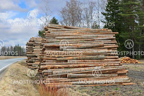 Roadside Timber Logs