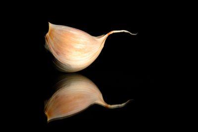 mirroring garlic