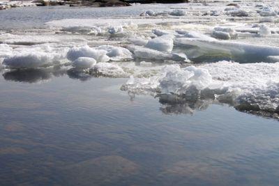 Ice floe in spring
