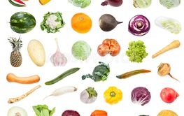 collection of various fresh vegetables isolated