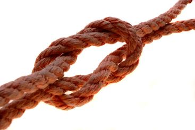 Sailor's, knot
