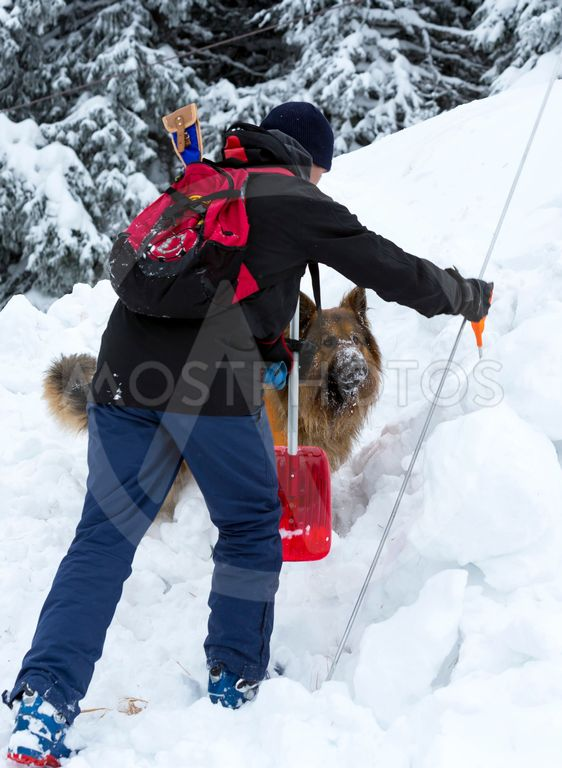 Red Cross rescuer with dog digging