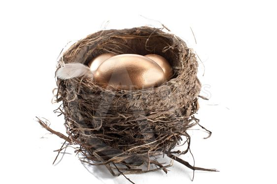 close up image of golden eggs and nest
