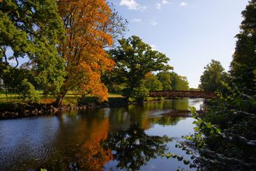 Ronneby stream in full autumn color