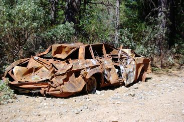Burnt Smashed Shotup Car In The Forest