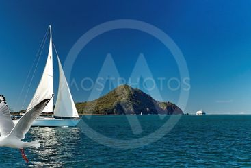 Yacht sailing past Yacaaba Head - Port Stephens.