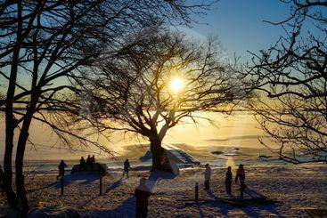 Children play in winter