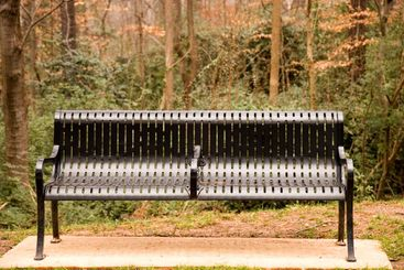 Black Iron Bench in Woods