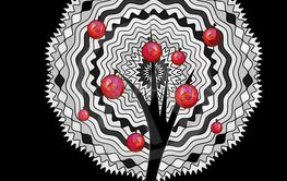 black background and the abstract white apple tree
